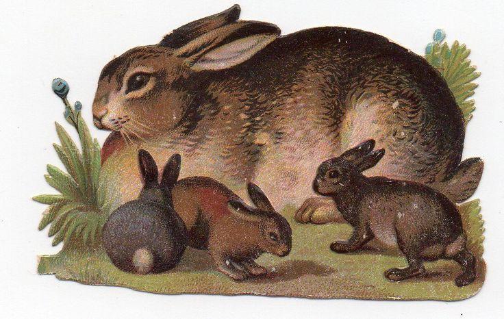 Chromo découpi die cut oblaten glanzbild scrap -  Maman lapin et ses bébés - 8cm