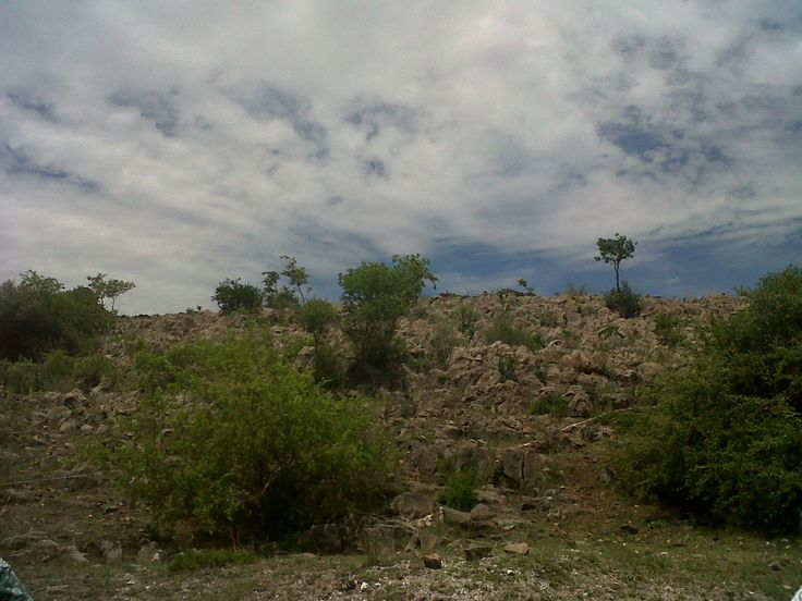 The Rising Star Fossil Site In The Cradle Of Humankind