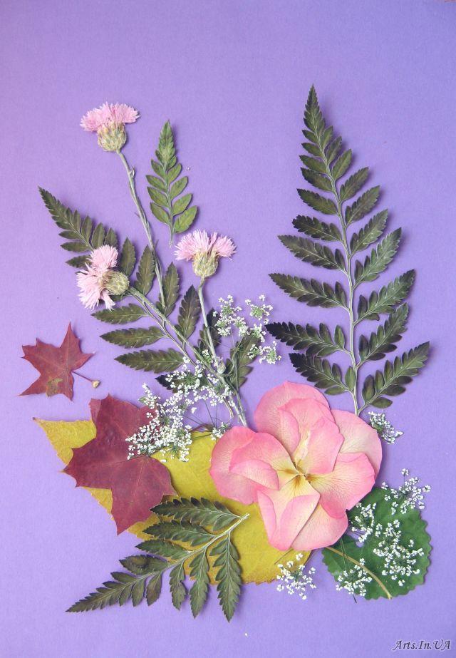 Открытки, открытка из сухих цветов листьев