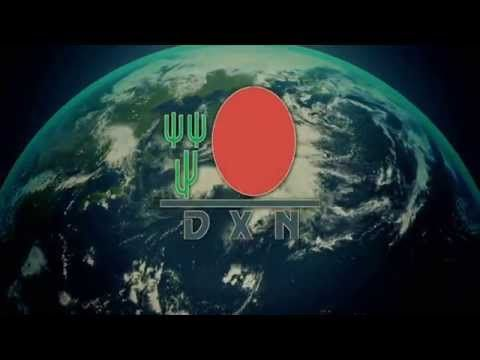 Poland and DXN company: a new beginning