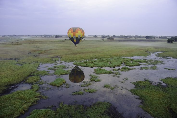 Hot-Air Ballooning over the Busanga Plains in Zambia's Kafue National Park... not to be missed!