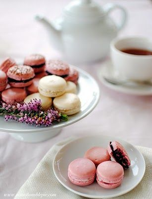 """The best recipe and Step by Step how to for the French Macaron on """"Not So Humble"""" blog. The only one that worked for me! The french secrets revealed! Good work Ms. Humble!!!"""