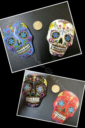 Skull Kandy magnets $3