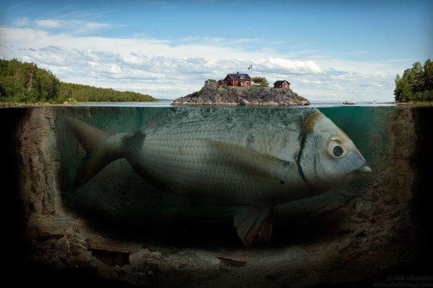 Incredible Photo Manipulation - 45 Amazing Examples For Your Inspiration - Geeks ZineGeeks Zine