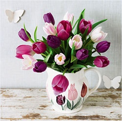 Waiting for Waitrose tulips in an Emma Bridgewater Tulips jug!