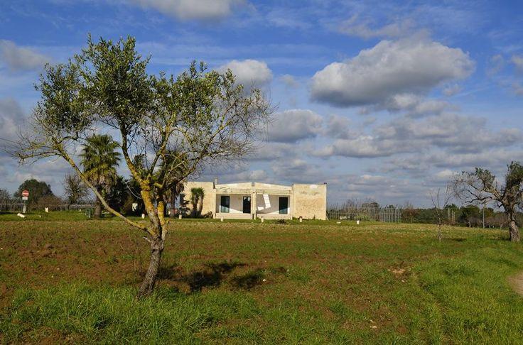 Luna laboratorio rurale è una comunità rurale che sta crescendo a Seclì, nella provincia di Lecce. Nasce da 5 ritorni a sud e dal ripristino di una struttura abbandonata, un tempo comunità di recupero per tossicodipendenti. Luna è uno spazio di rinascita: circa 3 ettari di terra, 4 serre abbandonate e una casa pronti ad accogliere progetti di innovazione sociale e agricola.