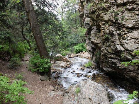 Utah Hike of the Week: North Fork of Deaf Smith Canyon in Cottonwood Heights   The Salt Lake Tribune