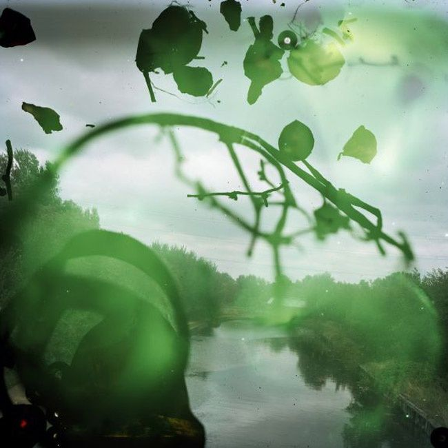 """SUPERIMPOSED REALITY, IN SERIES """"TALKING TO THE ANTS"""" BY STEPHEN GILL"""
