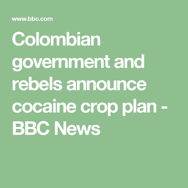 Colombian government and rebels announce cocaine crop plan - BBC News