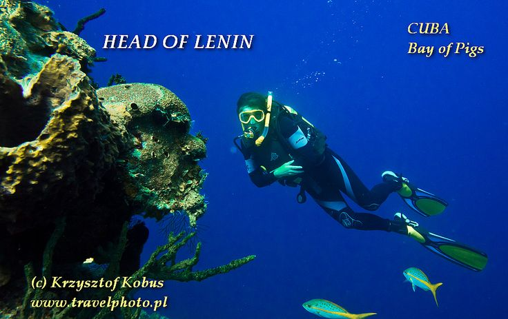 "Diving in Bay of Pigs, CUBA - Head of Lenin {nurkowanie w Zatoce Świń, KUBA - ""głowa Lenina""} #diving #cuba"