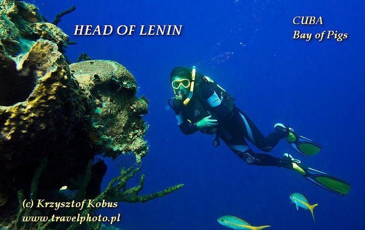 """Diving in Bay of Pigs, CUBA - Head of Lenin {nurkowanie w Zatoce Świń, KUBA - """"głowa Lenina""""} #diving #cuba"""