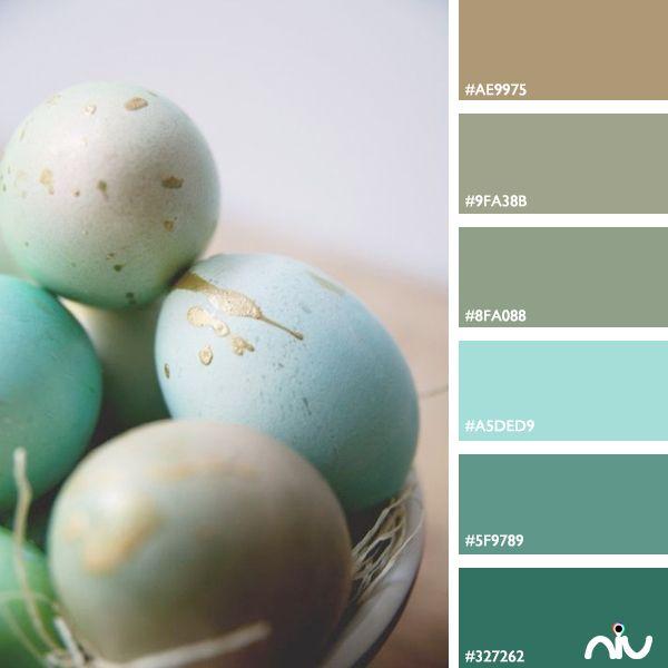 Egs Color Palette