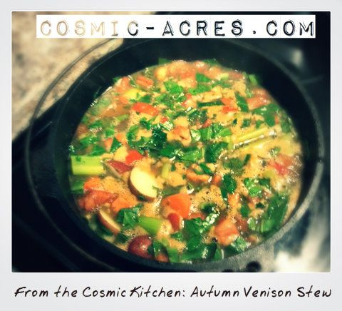 recipe from the Cosmic Kitchen for an Organic Autumn Venison Stew ...