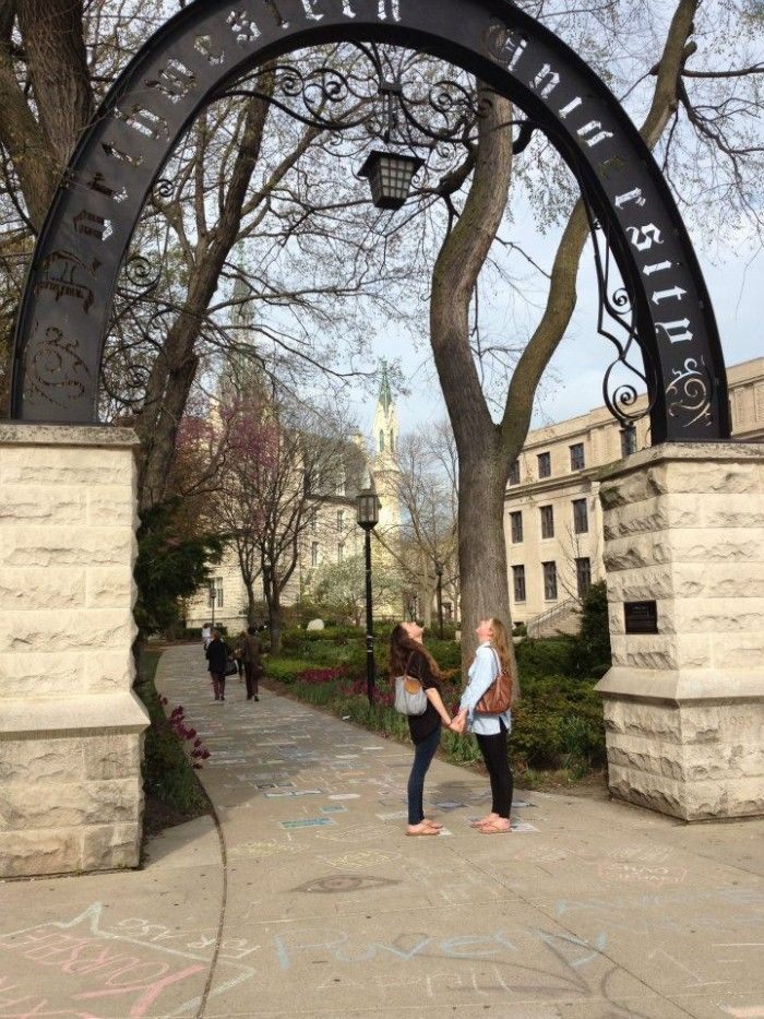 Go Cats! Welcome to Northwestern University! | Surviving College