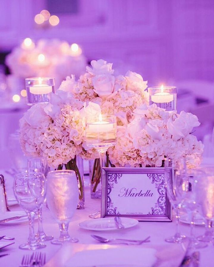 Beautiful Miami Wedding at The Palms Hotel