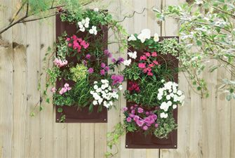 2 Wall planters - great for herbs and salad too. £9.95