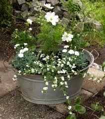 Bildresultat för planteringar i kruka