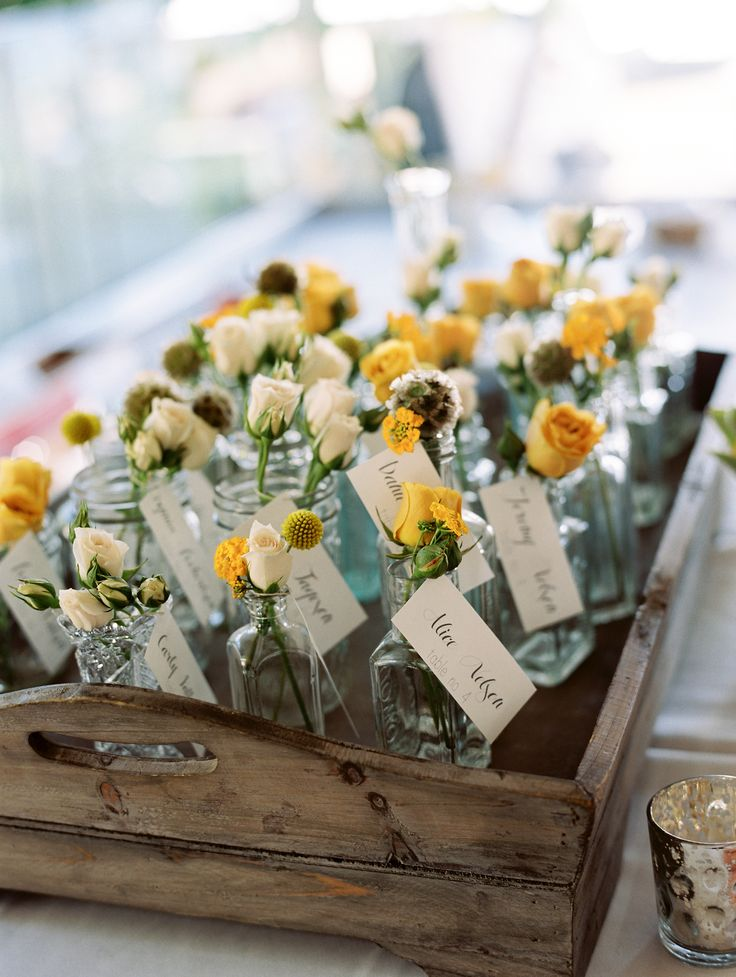 Best 25 Yellow Flowers Names Ideas On Pinterest Wedding And Daisies