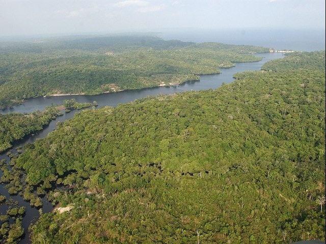 Maravilla de la Naturaleza: Amazonia, Sudamérica