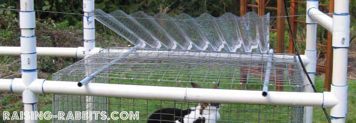 Rabbit hutch plans detail animals pinterest rabbit for Pvc rabbit cage