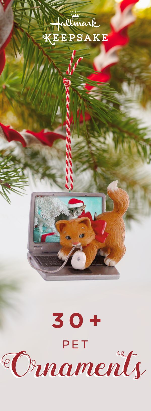 Find Christmas decorations for everyone with Hallmark