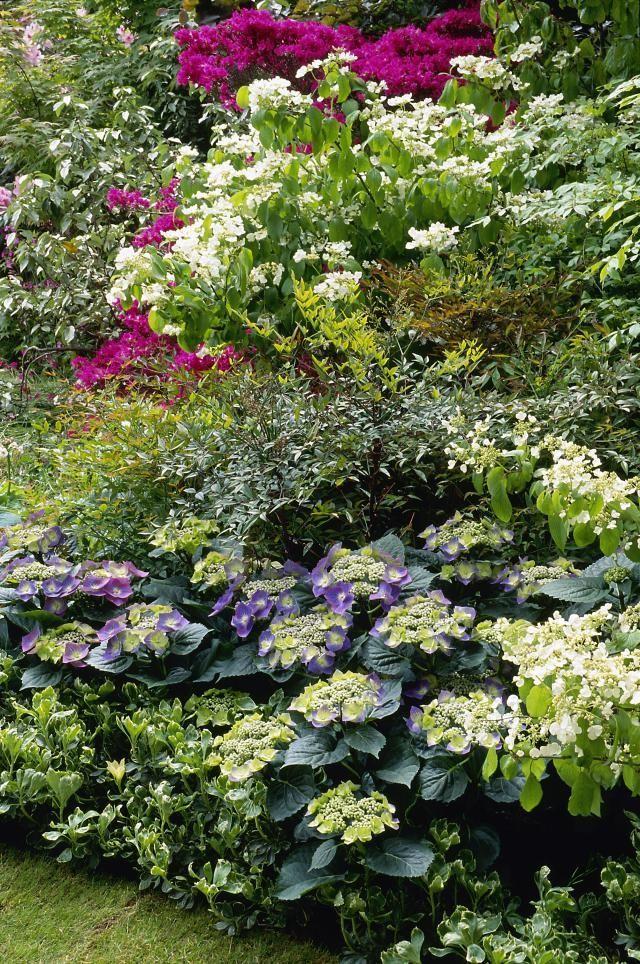 get flower garden ideas from great britain s top flower shows rh pinterest com