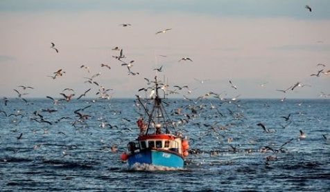Mel Sinclair - Orkney fisherman's daughter to Cannes Cook