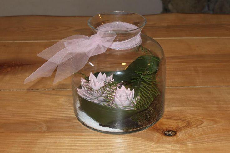 Very trendy. Plants in glass