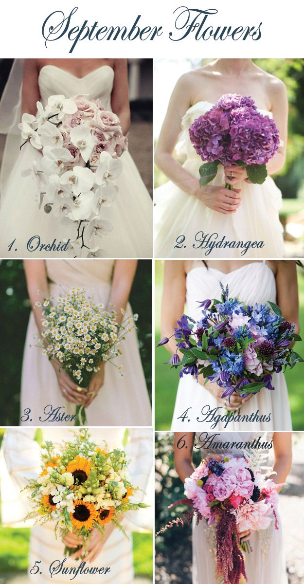 September Flowers | Lucky in Love Wedding Blog #weddingflowers #bridalbouquet #fallflowers