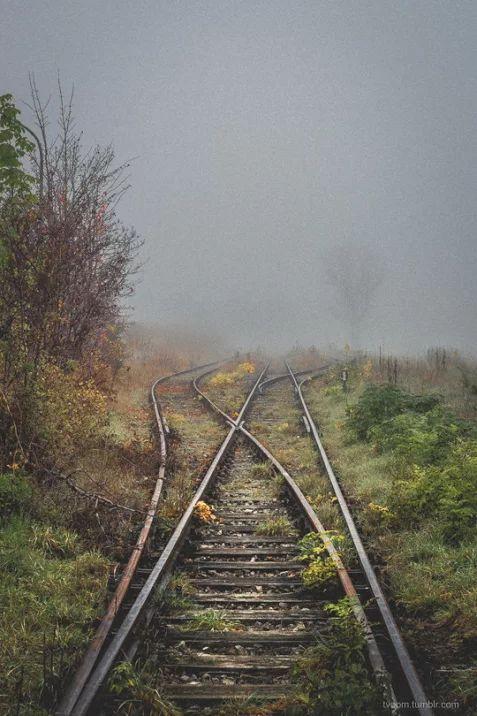 Photo ( in questo viaggiare sappiamo che dobbiamo avere la forza e il coraggio di riprendere la direzione giusta