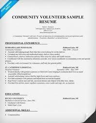 Image result for CV resume for NGO job