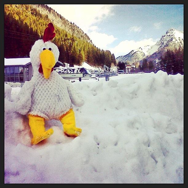 Grazie agli amici della #valdifassa che #oggi mi hanno invitato a #sciare al' #alpe di #lusia, proprio sopra #moena. È stata una #giornata ricca di #emozioni sulla #neve, #grazie! Ora #corro al #chickenco a #lavorare, voi passate a #mangiare o #stuzzicare by Chick, via Flickr