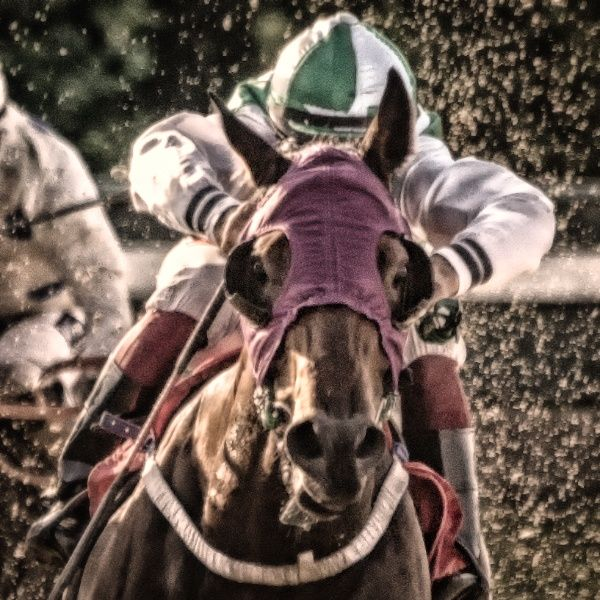 Horseracing -Green by Anders Stangl on 500px