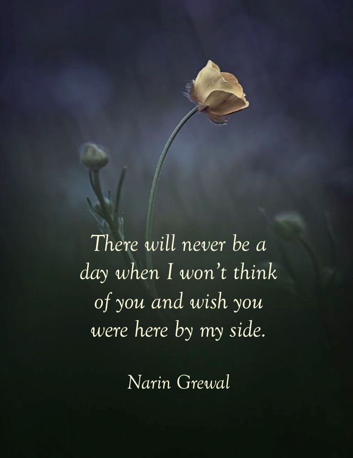There will never be ...