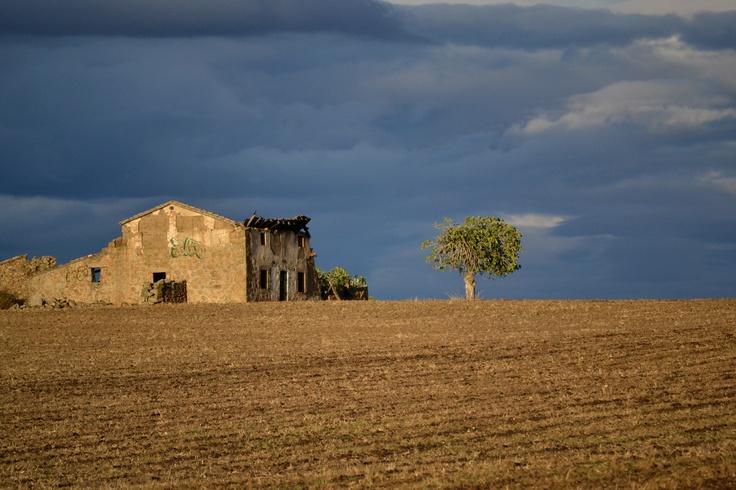 Horizonte - Castilla la Mancha (España)