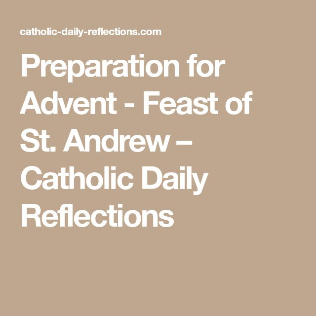 Preparation for Advent - Feast of St. Andrew – Catholic Daily Reflections