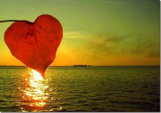 Sou como o raio de sol afagando o seu coração!