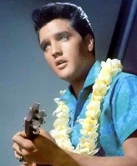 Blue Hawaii is one of Elvis' most successful films. Produced by Hal Wallis and directed by Norman Taurog it reached #2 of Variety's weekly list of Top Grossing films.  After the 1960 dramas of Flaming Star and Wild In The Country, Blue Hawaii was a return to the musical fluff first seen in GI Blues. While Elvis craved dramatic interest and acting challenges the general public thought otherwise.