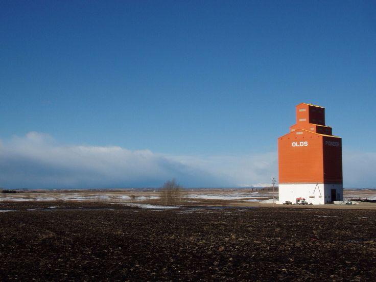 Grain elevator by Olds