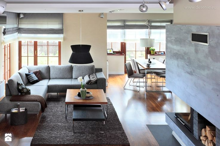 * dom bibice - Salon, styl nowoczesny - zdjęcie od d e s e n i e