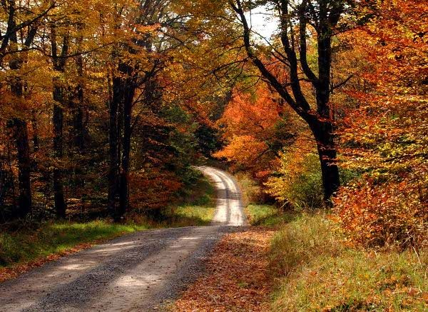 Country Road!