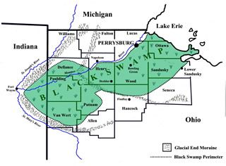 This is the Great Black Swamp which prevented immigration to northern Indiana from directly east.