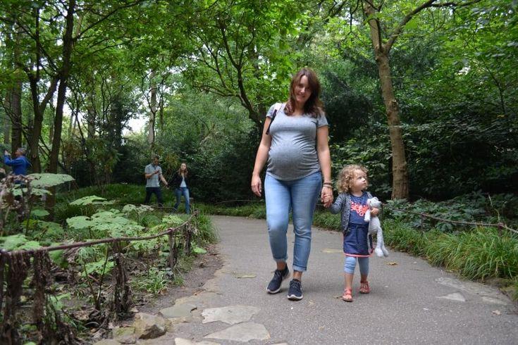 In je derde trimester naar de Efteling, kan dat wel? #blogfeestje @moonoloog