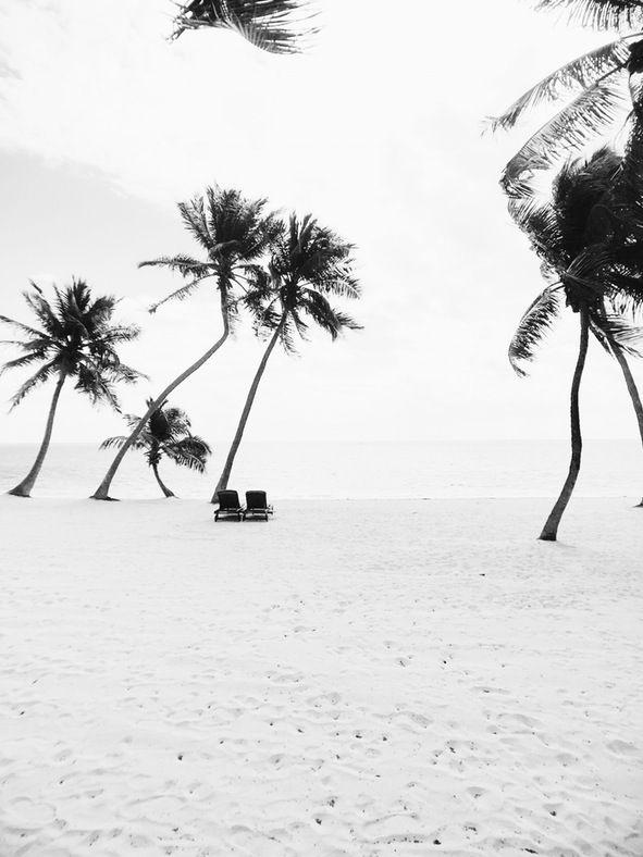 #floridakeys   Mark Weinberg - Photographer - NYC   VSCO Grid