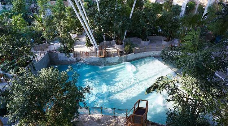 18 best things to do in the subtropical swimming paradise - Elveden forest centre parcs swimming pool ...