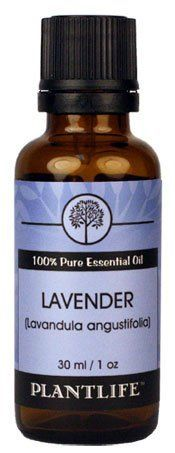 Lavender 100 Pure Essential Oil  30 ml *** You can find out more details at the link of the image.