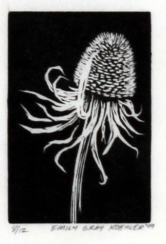 Rudbeckia - Original Wood Engraving. $45.00, via Etsy.  Can't go wrong with black and white.  Love this!