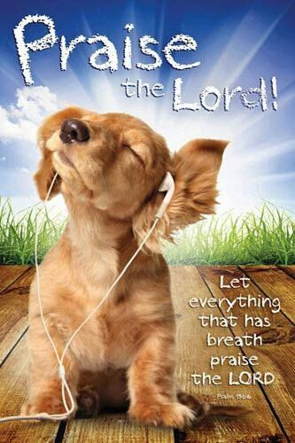 Praise the Lord!  -  I imagine God has Golden's praising Him around His throne, too.  :)