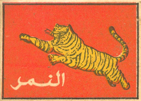 I'm not sure if it's Arabic or Farsi, but it evokes the Caspian tiger, which lived in Iran and other parts of the Middle East until it became extinct. The tiger is featured in Arabian art, and Muslims from various lands have revered this great cat.
