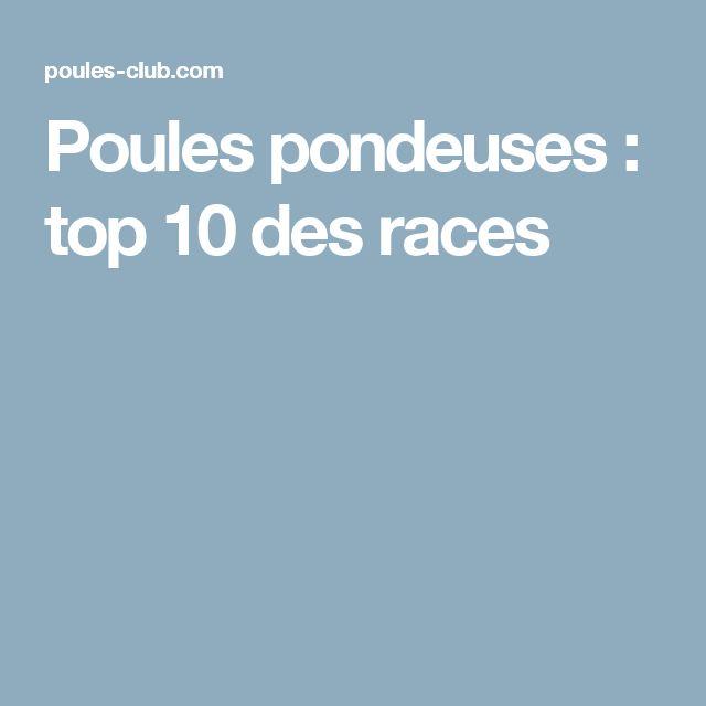 Poules pondeuses : top 10 des races